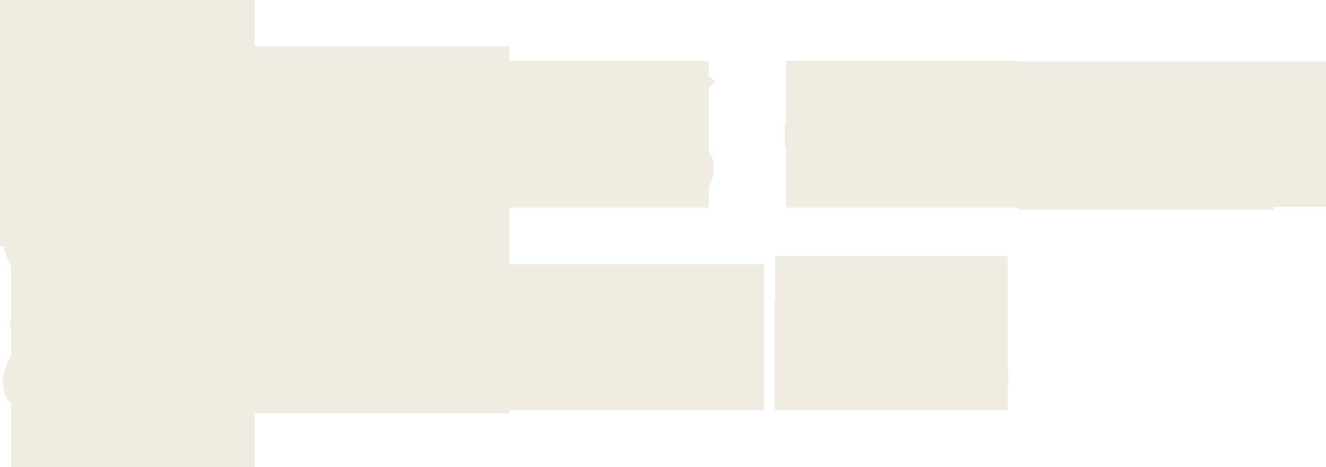 RS Global